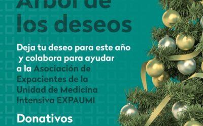 Campaña de recaudación de fondos «Árbol de los deseos»